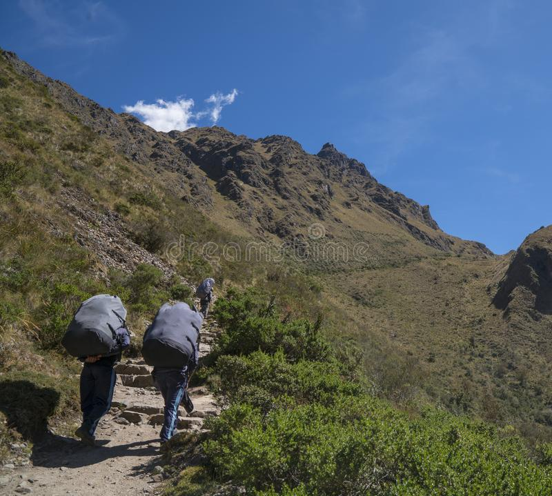 Portiers Carry Heavy Packs sur Inca Trail photos stock