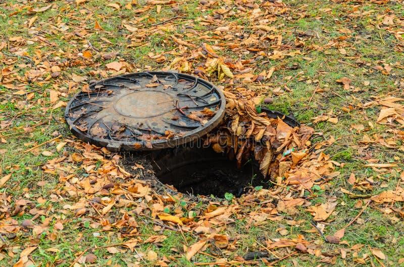Portilla abierta de la alcantarilla en el césped, cubierto con las hojas de otoño caidas fotografía de archivo