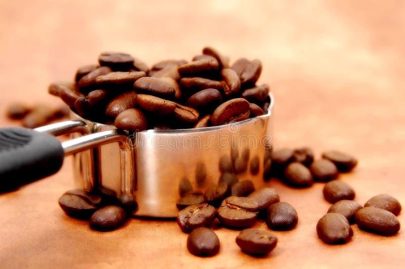 Download Portion de Java photo stock. Image du filtrez, cuvette, decaf - 53298