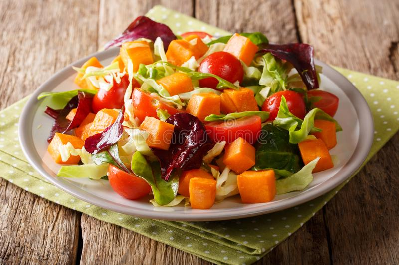 Portion of salad with sweet potato, fresh vegetables and herbs d royalty free stock photos