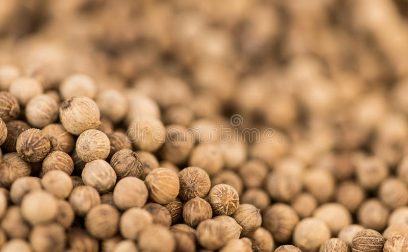 Portion of White Pepper. Fresh made White Pepper on a vintage background as detailed close-up shot stock images