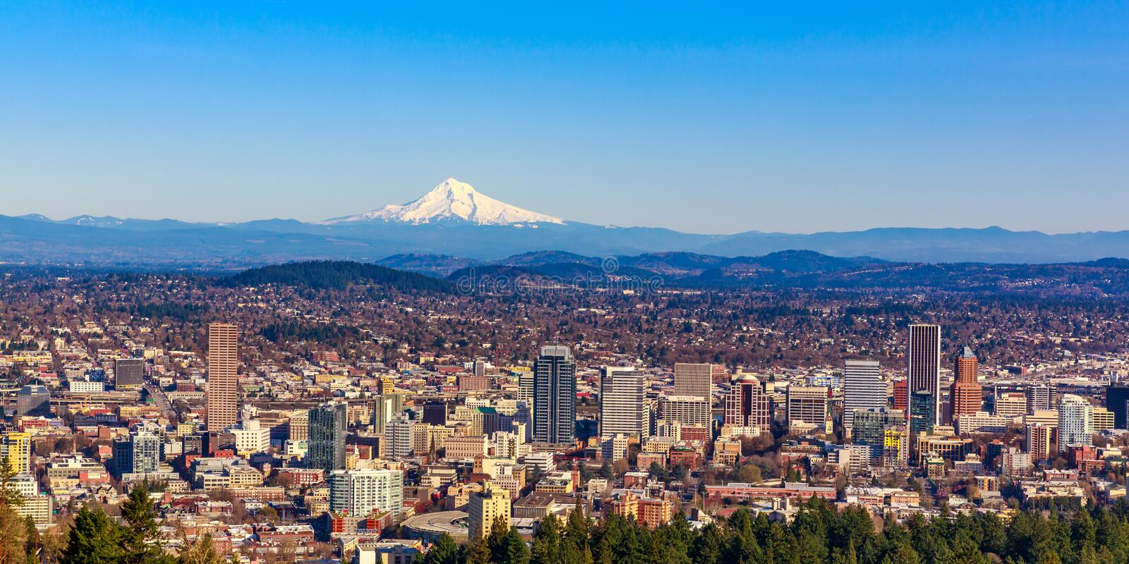 Portland Downtown Cityscape with Mt Hood royalty free stock photos