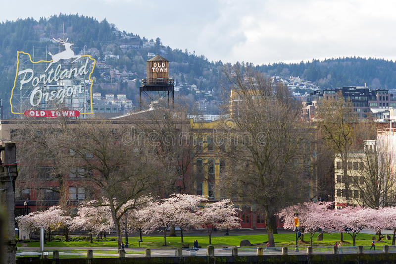 Portland Oregon Old Town Waterfront. With Cherry Blossom trees blooming in Springtime royalty free stock images