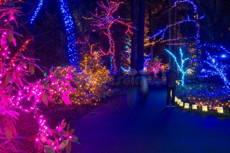 Portland, Oregon, USA, Dezember, 31, 2015: ein Versuch von Lichtern am Festival der Licht-Grotte in Portland, Oregon stockbilder