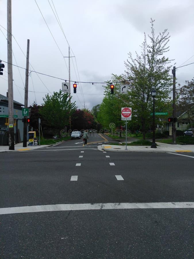 Portland, Straßenbeleuchtung, Zebrastreifen, Verkehrsschilder, Bürgersteig, Bäume, hübsches Material stockbilder