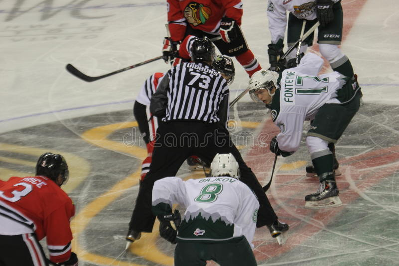 Portland Winter Hawks ,Everett faceoff stock image