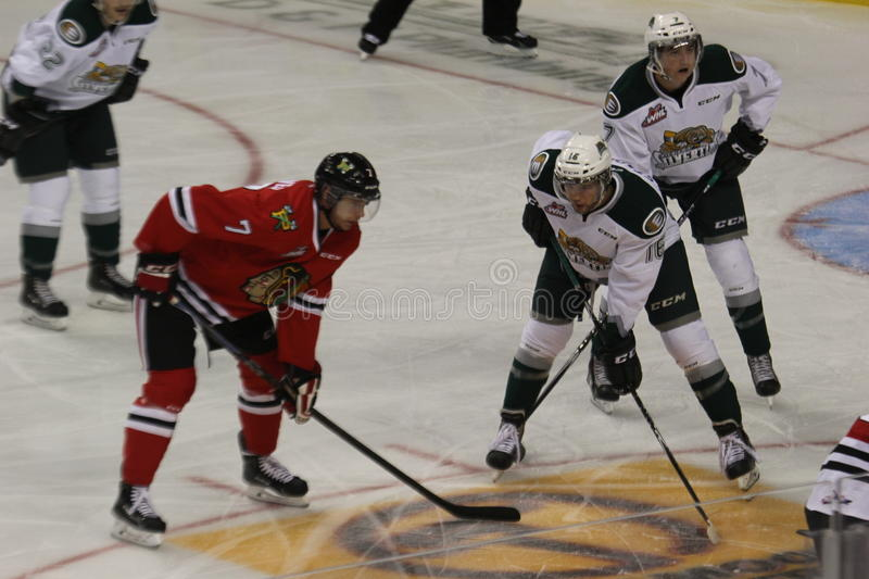 Portland Winterhawks and Everett Silvertips faceoff. In a WHL game on September 27th 2014 stock image