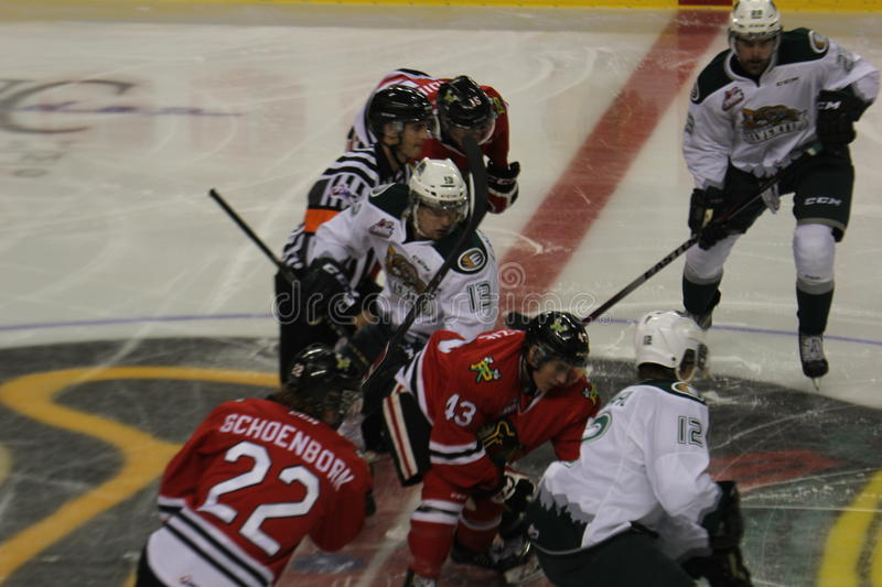 Portland Winterhawks face off. The face off between the Portland Winterhawks and Everett Silvertips in a WHL game stock photography