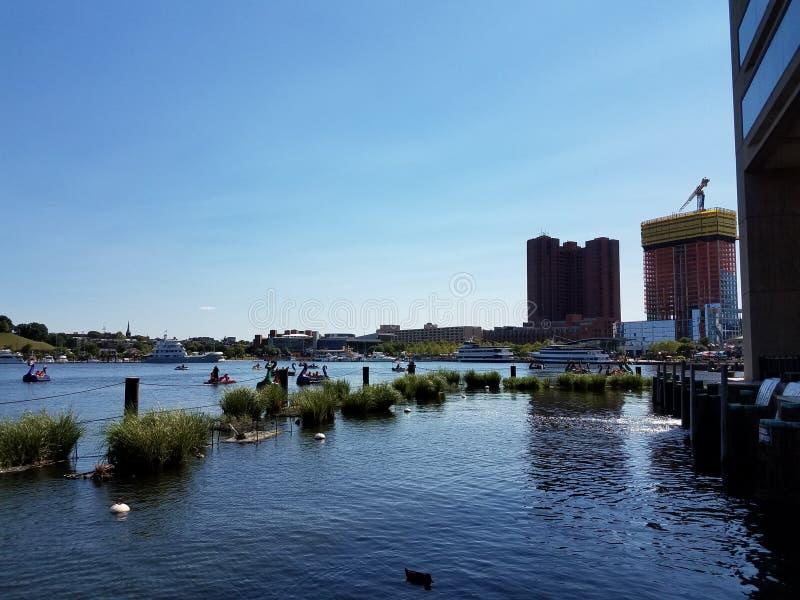 Porto com construções e barcos de pá do dragão imagem de stock royalty free