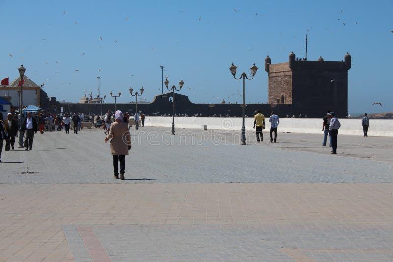 Porto de Essaouira, Marrocos fotos de stock royalty free