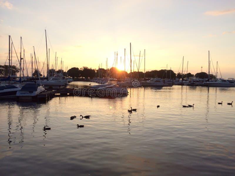 Porto di Belmont di alba fotografie stock libere da diritti