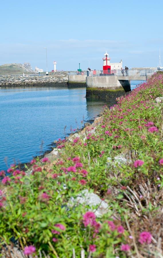 Porto di Howth, Dublino, Irlanda fotografia stock libera da diritti