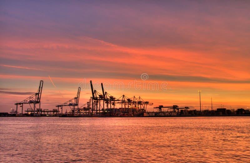 Download Porto di Rotterdam fotografia stock. Immagine di rotterdam - 7302936