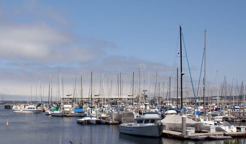 Porto do louro de Monterey imagens de stock royalty free