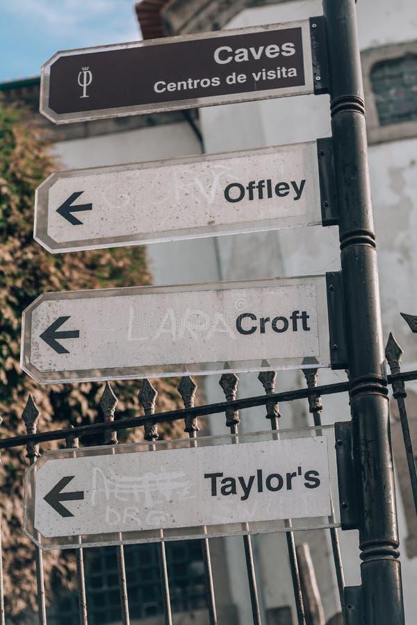 Porto gatatecken Lara Croft royaltyfria bilder