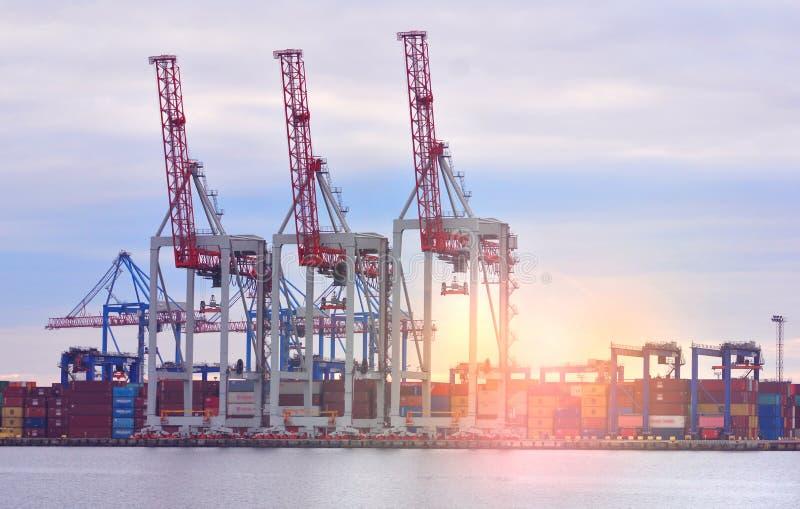 Porto marítimo com os guindastes durante o alvorecer Carga e transporte fotos de stock royalty free