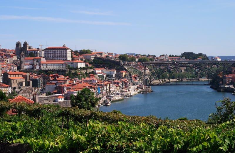 Porto panorama stock afbeelding