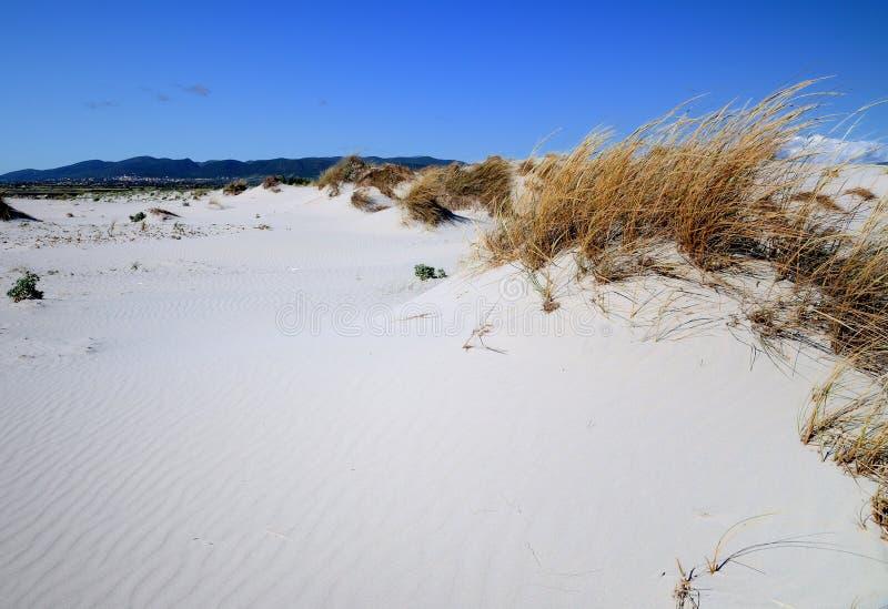 Download Porto Pino stock image. Image of sand, landscape, panorama - 30100537