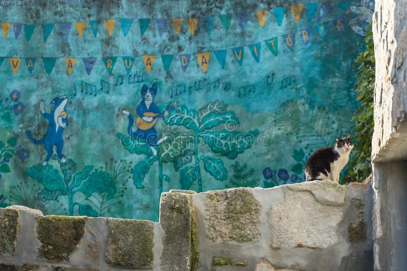 Graffiti of Porto. Stray cat sitting on the wall with a portuguese street art showing cats playing music at background stock image