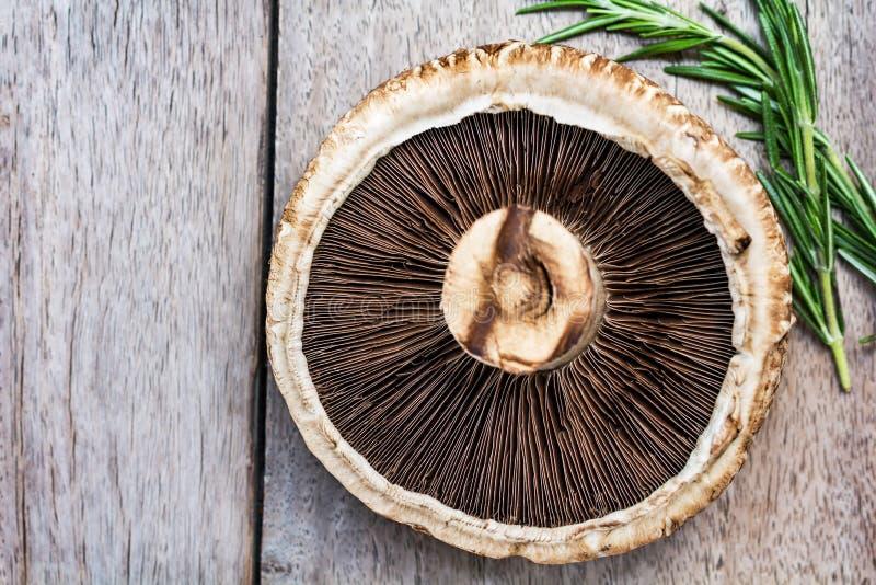 Portobello Mushroom. Fresh Portobello Mushroom by rosemary on wood board royalty free stock photography