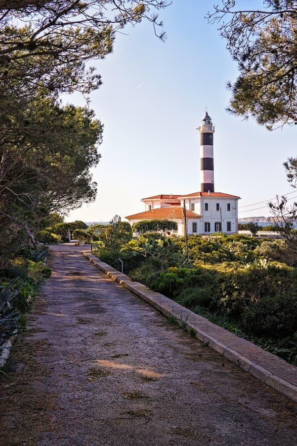 Portocolom fyr med gångbanan som mycket leder till och med trädgård av träd, mallorca, Spanien arkivbilder