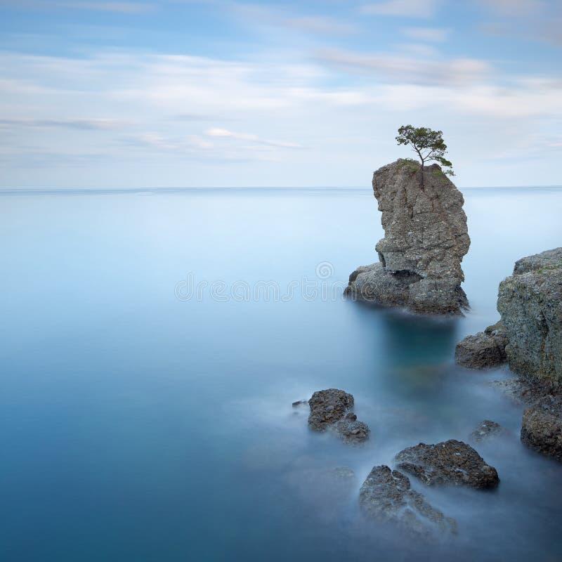 Portofino Park. Kieferfelsen. Lange Berührung. lizenzfreie stockfotografie