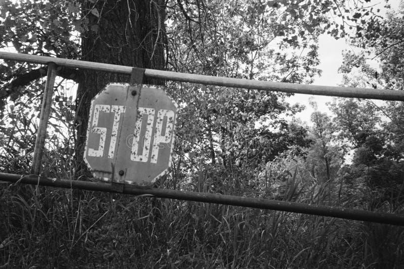 Portone di arresto della foresta fotografia stock