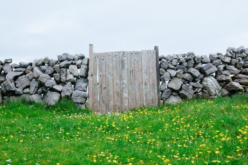Portone di legno, Irlanda fotografia stock