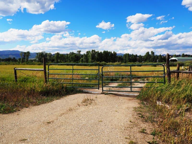 Portone verde da una prateria in Colorado fotografia stock