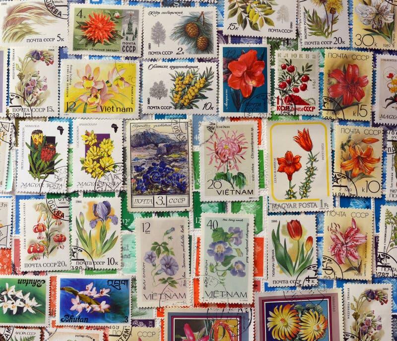Portostämplar av blommor arkivbild