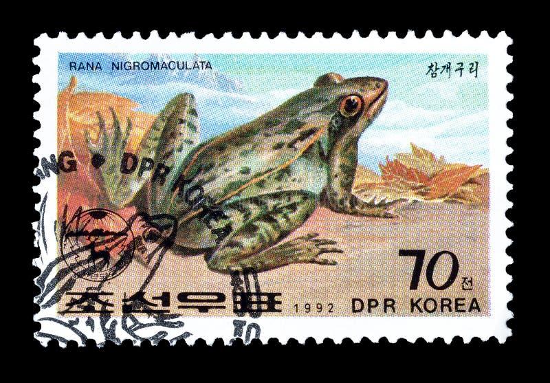Portost?mpel som skrivs ut av Nordkorea arkivfoto