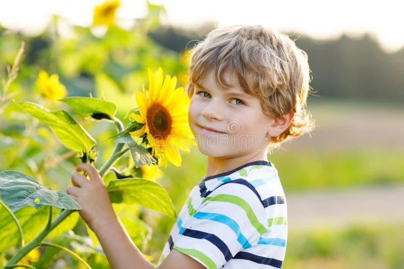 Porträt des schönen kleinen blonden Kinderjungen auf Sommersonnenblumenfeld draußen Nettes Vorschulkind, das Spaß auf warmem hat stockbilder