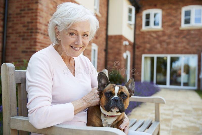 Porträt der älteren Frau sitzend auf Bank mit Haustier-französischer Bulldogge in der Anlage des betreuten Wohnens lizenzfreies stockbild