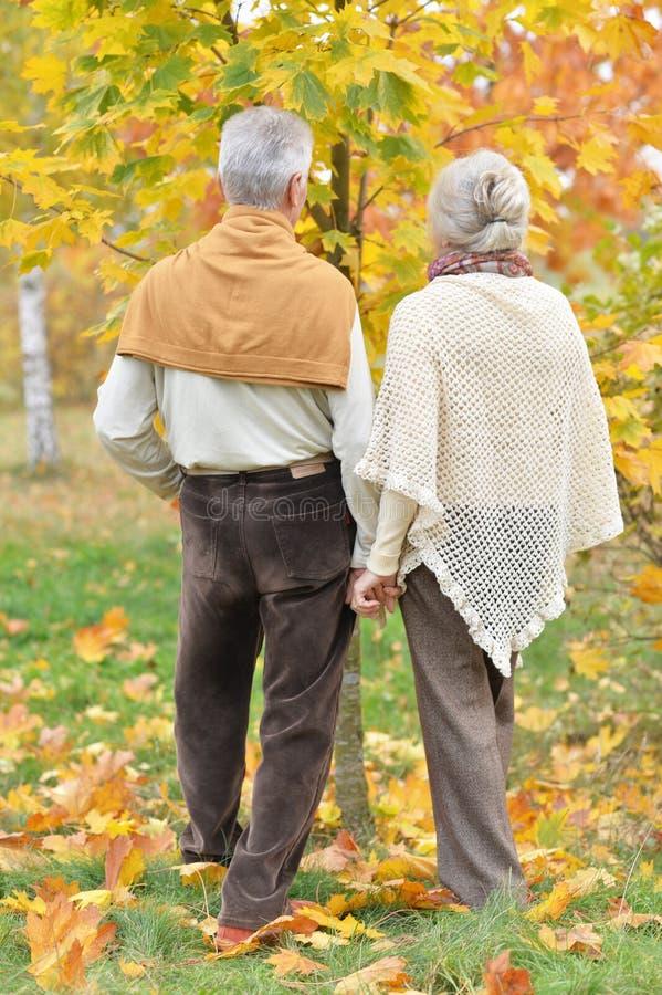 Porträt der älteren Frau und des Mannes im Park stockfoto