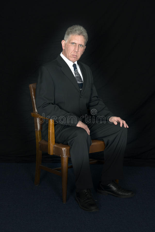 Porträt der Exekutive, CEO, Chef, Führer, Leadersh stockfotos