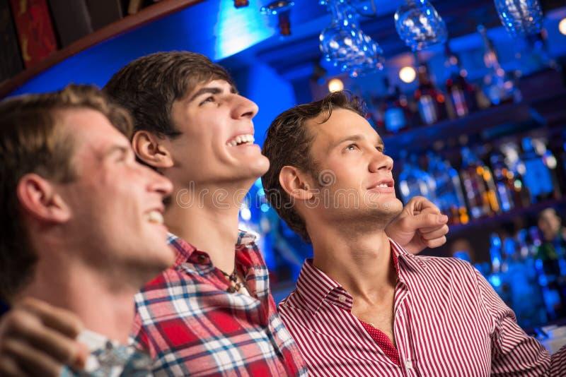 Porträt der Fans in der Stange lizenzfreie stockfotos