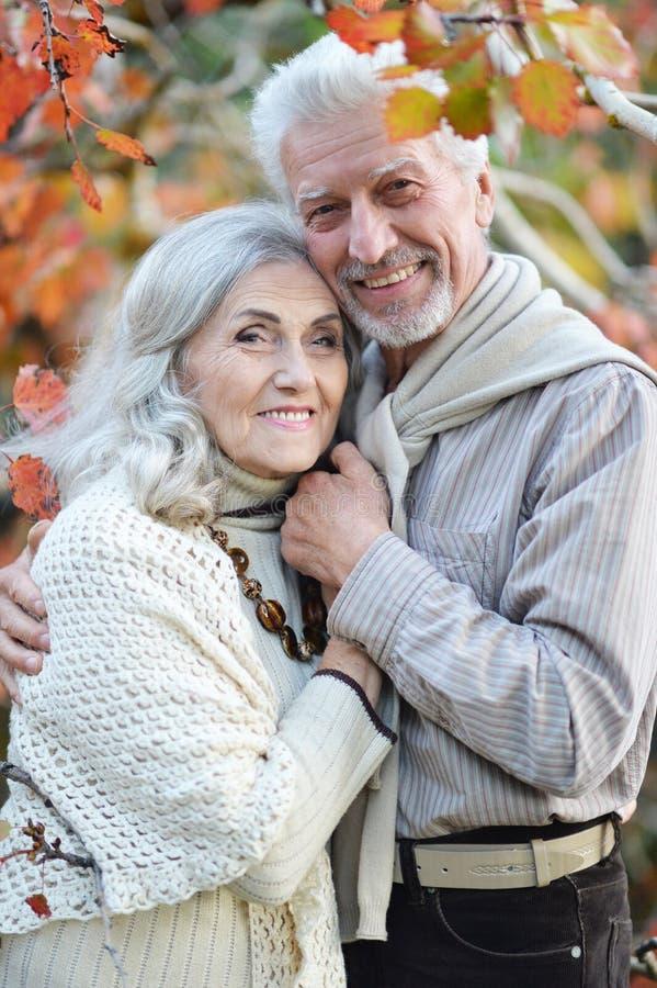 Porträt der glücklichen älteren Frau und des Mannes im Park lizenzfreies stockfoto
