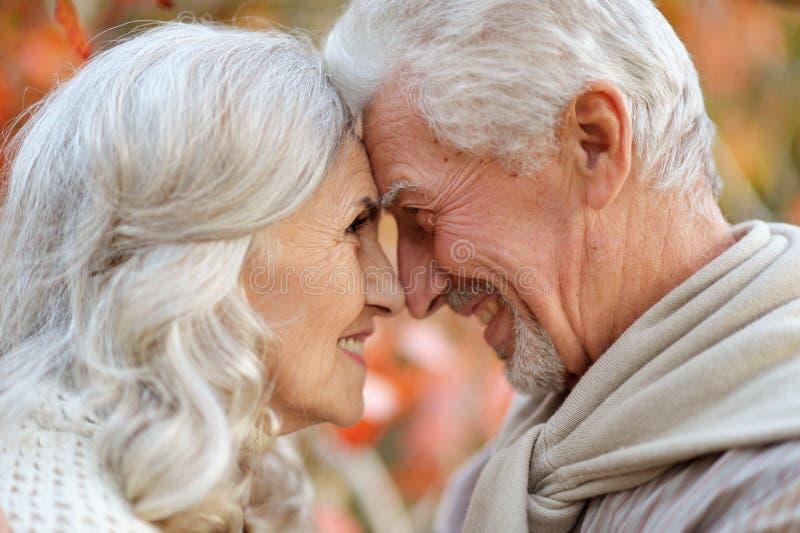 Porträt der glücklichen älteren Frau und des Mannes im Park stockbild