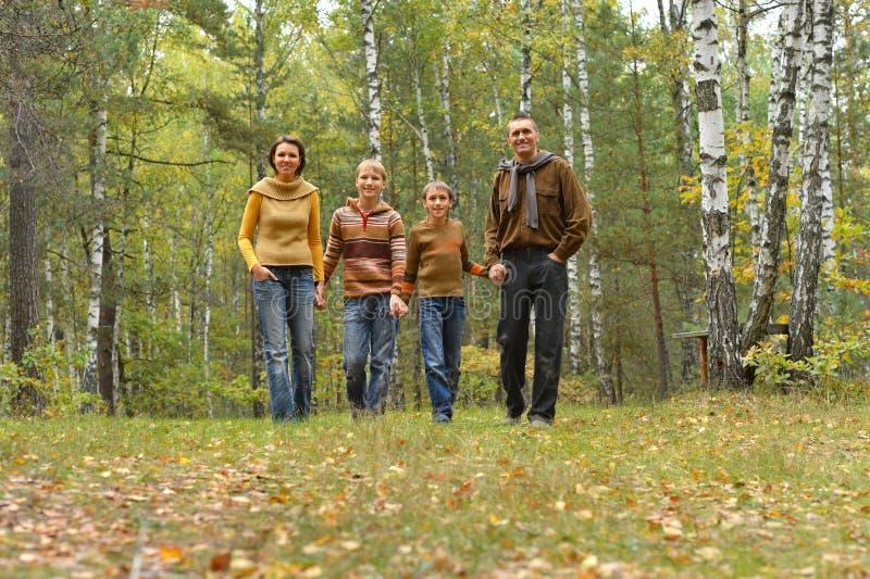 Porträt der glücklichen jungen Familie, die in einem Park stillsteht stockbilder