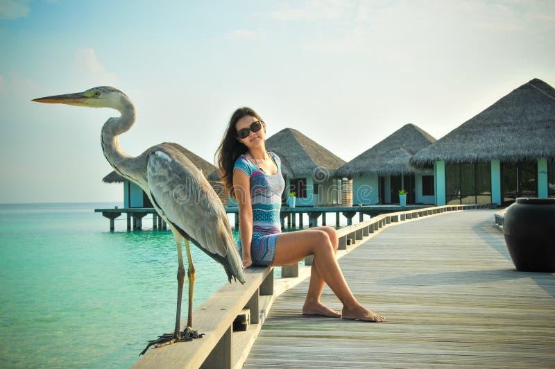 Porträt der jungen asiatischen schauenden Frau, die hinter Vogel am tropischen Strand bei Malediven sitzt lizenzfreies stockfoto