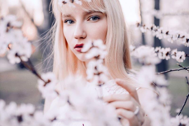 Porträt der jungen Frau unter blühendem Aprikosenbaum lizenzfreie stockfotos