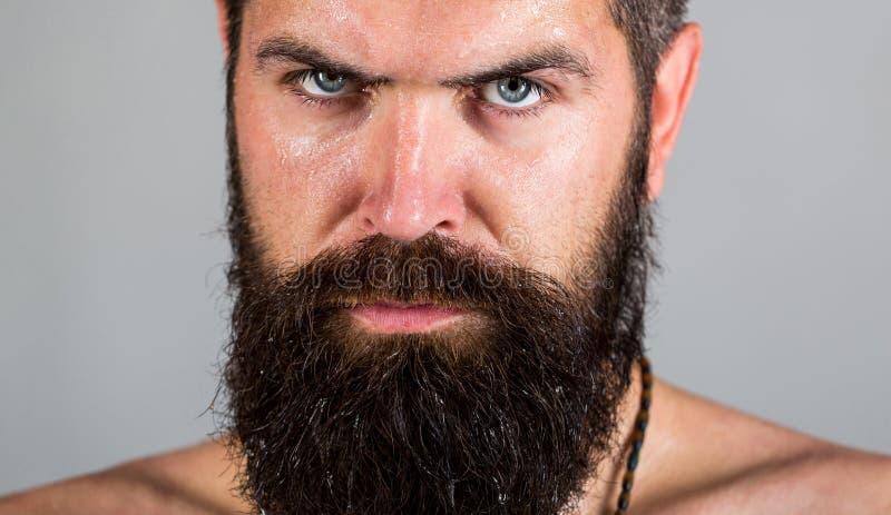 Porträt der Männlichkeit Sexy Blick des Mannes Hippie-Mann mit Bart, Schnurrbart Reizvoller Mann Grober bärtiger Mann des Porträt stockbilder