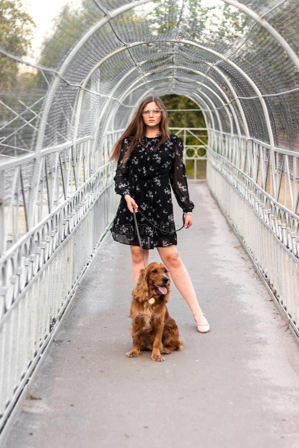 Porträt der netten jungen Frau mit ihrem Hund auf der Brücke im Park Freundschaft, Haustier und Mensch lizenzfreie stockfotos
