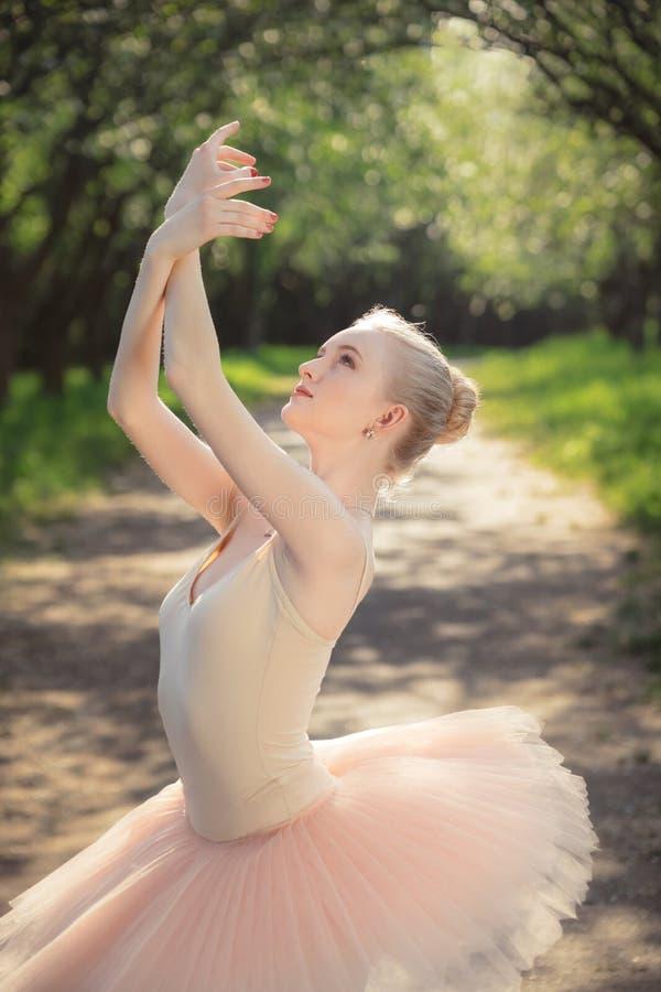 Porträt der schönen Ballerina mit romantischem und zartem Gefühl stockbild