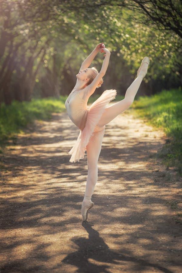 Porträt der schönen Ballerina mit romantischem und zartem Gefühl stockfotografie