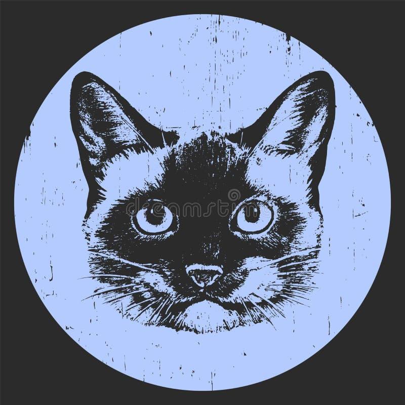 Porträt der siamesischen Katze Hand gezeichnete Abbildung lizenzfreie abbildung