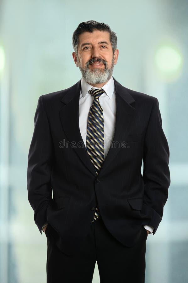 Porträt des älteren Geschäftsmannes lizenzfreie stockbilder