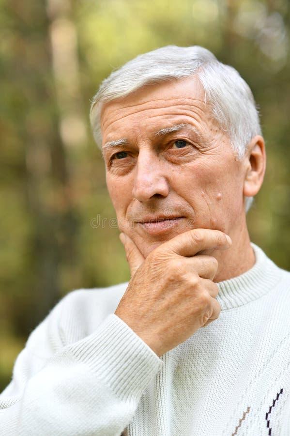 Porträt des älteren Mannes im Park auf grünem Hintergrund stockbild