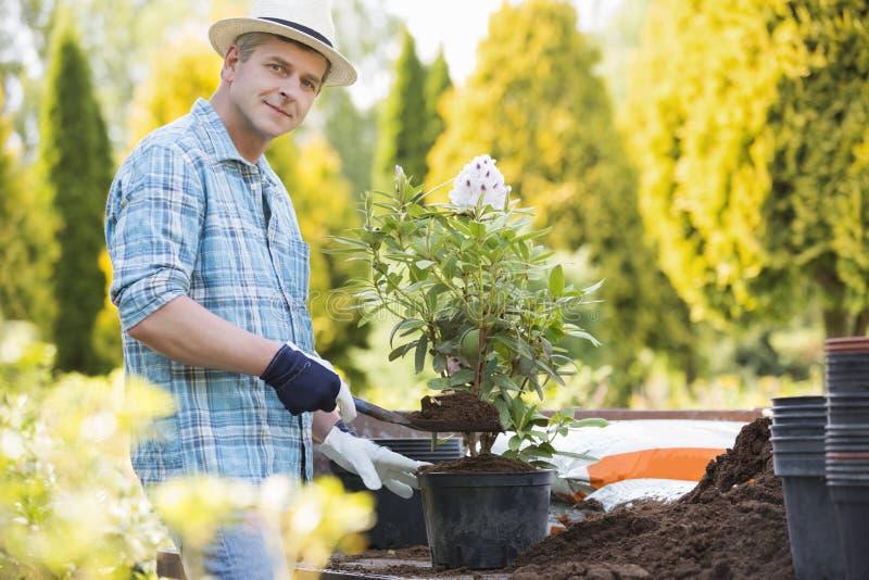 Porträt des überzeugten Mannes Topf am Garten pflanzend stockbild