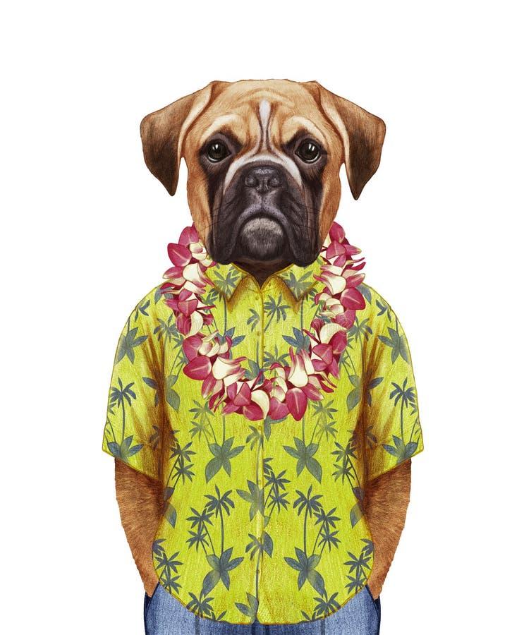 Porträt des Boxer-Hundes in einem Sommerhemd mit hawaiischen Leu stock abbildung